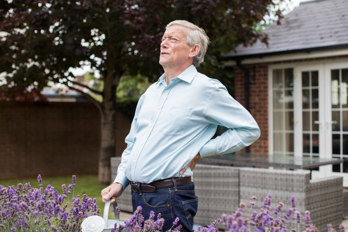 low back pain from gardening north finchley